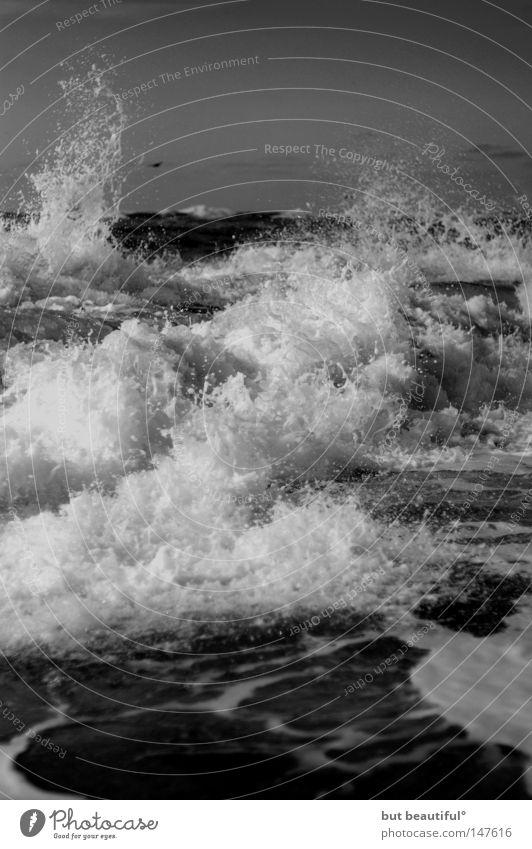 steaming foam° Ocean Coast Sylt Surf Force Beautiful rampaging North Sea Massive Overwhelming