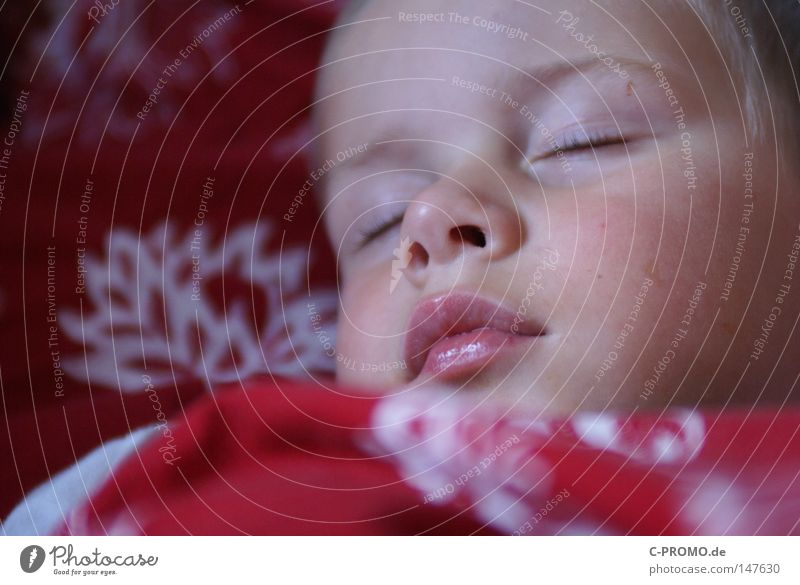 Boy sleeps peacefully in bed Boy (child) Child Sleep Dream midday nap Bed Infancy Light heartedness Cute Small Toddler Mouth Closed eyes Relaxation Night Feeble