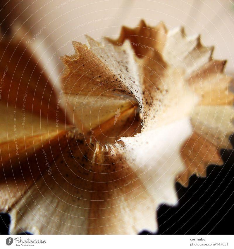 Wood Brown Things Trash Spiral Remainder Beige Pencil Stationery Zigzag Lead Pointed Wavy line