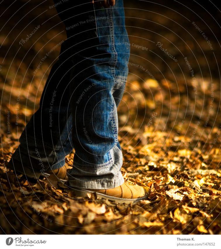 Leaf Autumn Legs Feet Footwear Gold Jeans Pants Seasons Boots Denim Woodground