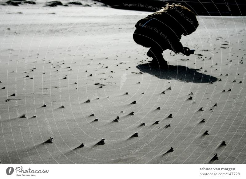 motive found Beach North Sea Wind Water Lake Shadow Human being Woman Photographer Take a photo Crooked Posture Mussel Sand Mud flats Low tide High tide