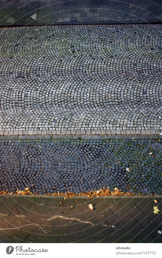 Blue Leaf Street Autumn Above Gray Line Tall Empty Lanes & trails Sidewalk Traffic infrastructure Cobblestones Parking lot Graphic Curb