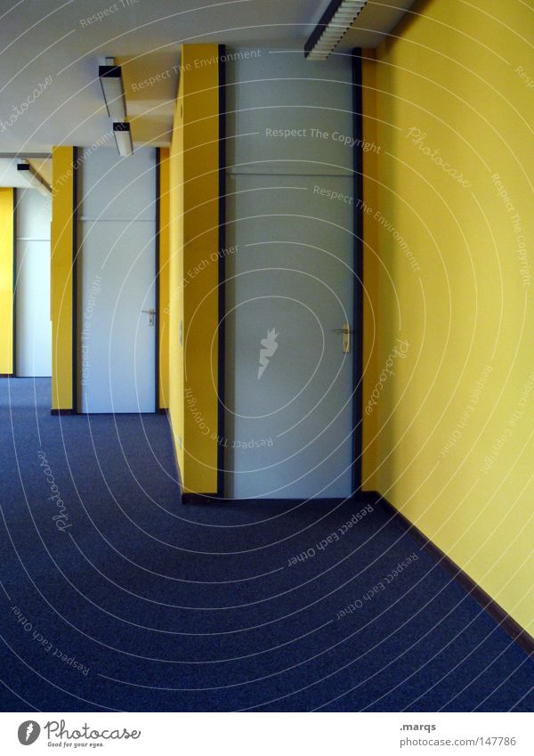 Blue Yellow Colour Wall (building) Office Line Door Floor covering Entrance Hallway Carpet Way out