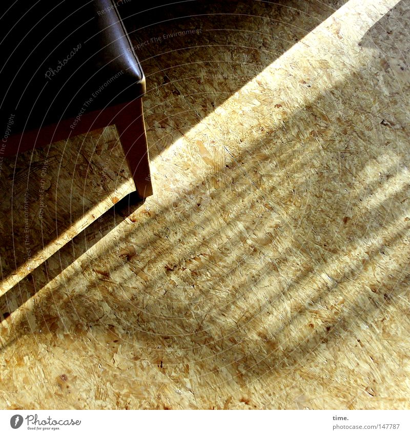 Light blew in and the notes found each other again. Uniqueness Warmth Brown Piano stool Wooden floor Corner Striped harmonies Wood grain sharp-edged Harp