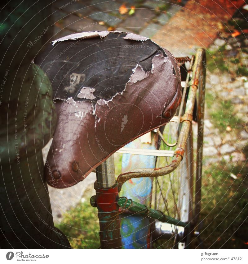 old iron Bicycle Iron Broken Rust Trash Defective Bicycle saddle Lantern Lamp post Throw away Invalided out Repair Transport Lomography Transience Old Lean