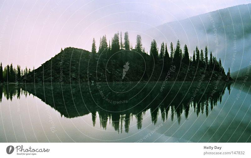 Sky Water Tree Calm Black Dark Cold Lake Fog Island Clarity Mirror Tilt Canada Eerie National Park