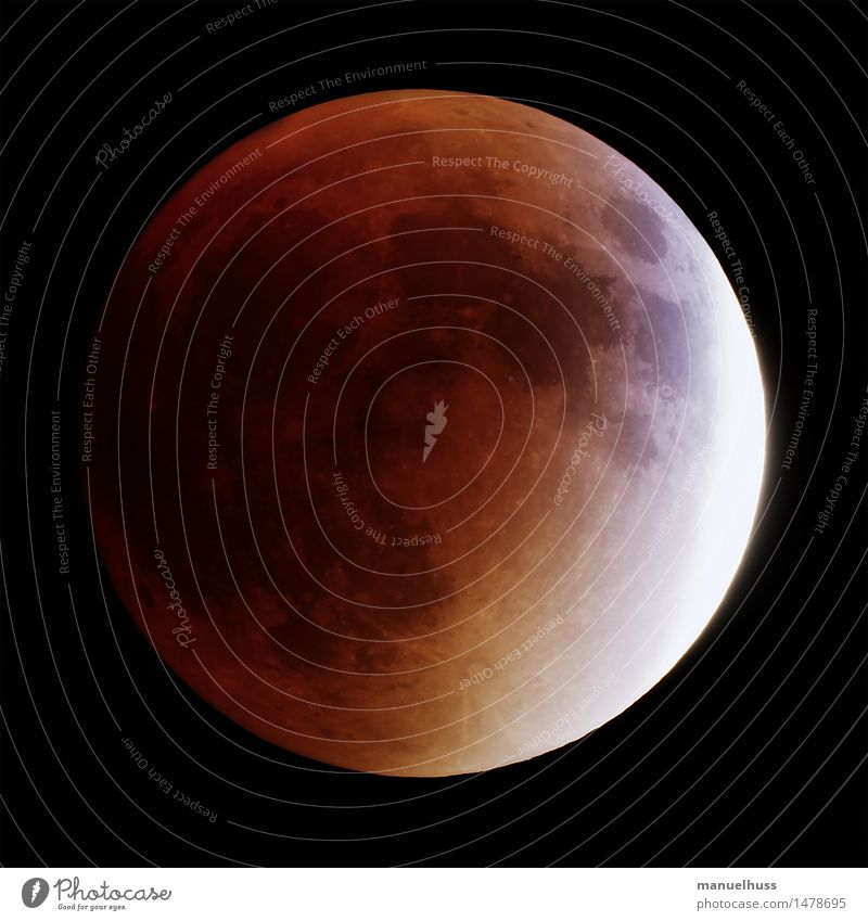 super blood moon Night sky Moon Lunar eclipse Full  moon Large Yellow Red Black Science & Research Astronautics Dark Telescope Zoom effect Detail Universe