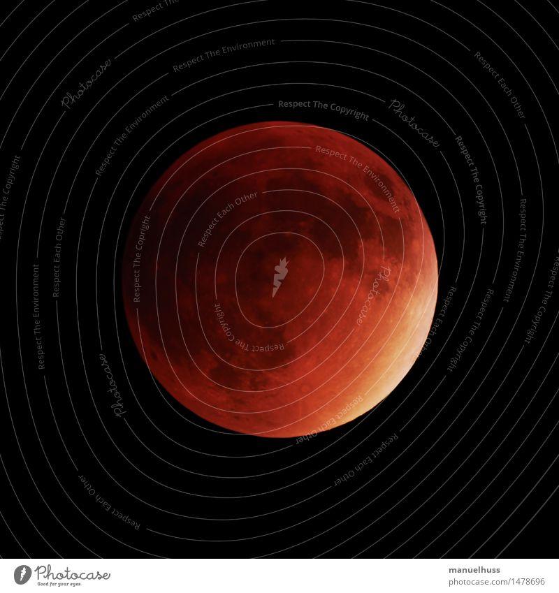 Red Dark Large Universe Science & Research Moon Night sky Telescope Astronautics Full  moon Zoom effect Astronomy Lunar landscape Lunar eclipse