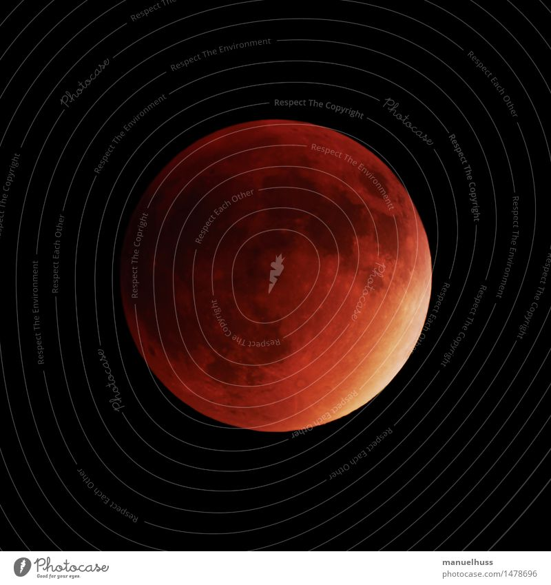 super blood moon Night sky Moon Lunar eclipse Full  moon Large Red Science & Research Astronomy Astronautics Dark Telescope Zoom effect Detail Universe