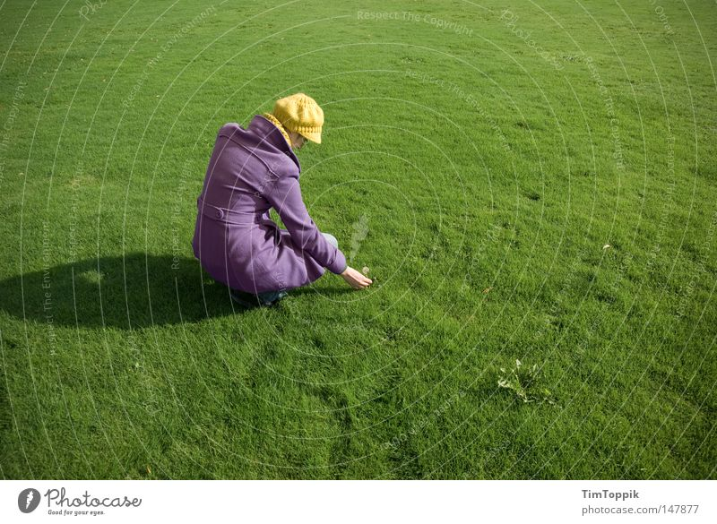 Woman Nature Green Plant Yellow Meadow Grass Garden Park Lawn Peace Violet Grass surface Dandelion Cap Coat