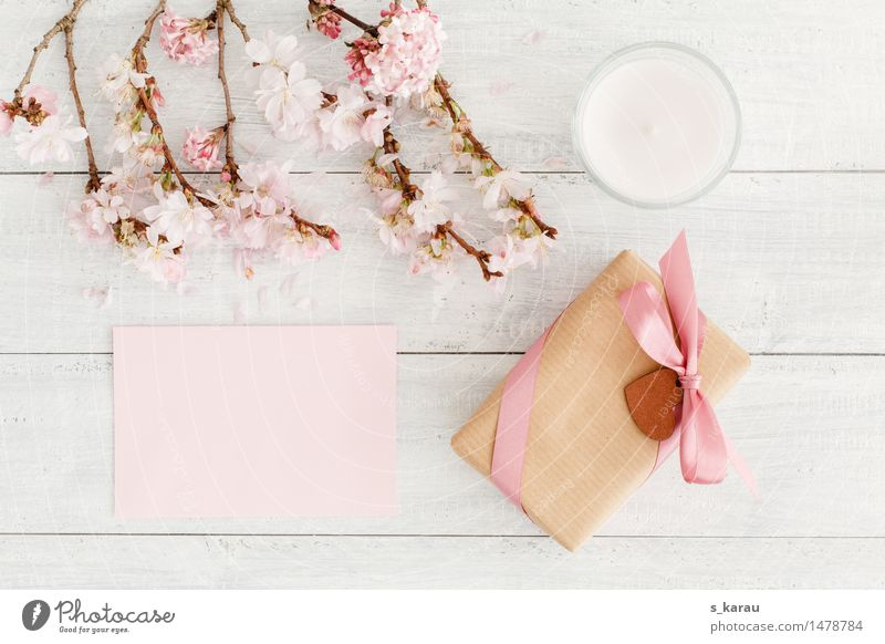 Blossom Spring Background picture Wood Bright Friendship Pink Heart Gift Sign Romance Seasons Candle Card Relationship Valentine's Day