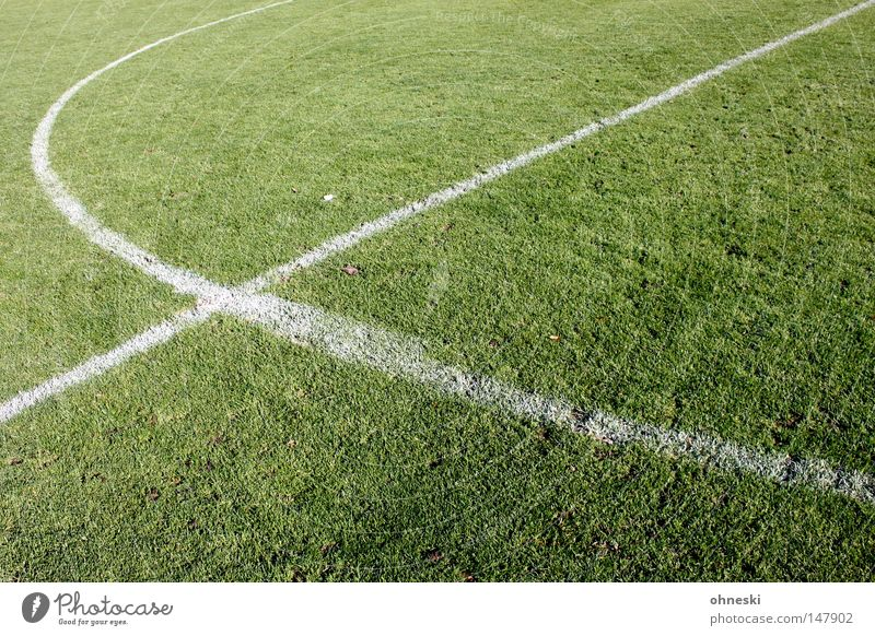 Football is our life... Football pitch Soccer Grass surface Center circle Line Chalk Center line Kick off Trident Pitchfork Fork Diagonal Circle Playing Green