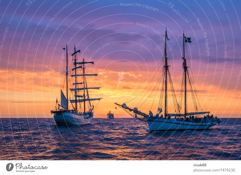 Sailing ship at the Hanse Sail Relaxation Vacation & Travel Tourism Water Clouds Baltic Sea Ocean River Navigation Maritime Romance Idyll Nature Tradition