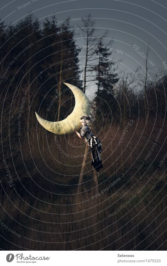 Human being Woman Sky Nature Tree Far-off places Forest Adults Environment Autumn Meadow Feminine Adventure To hold on Moon Fairy tale