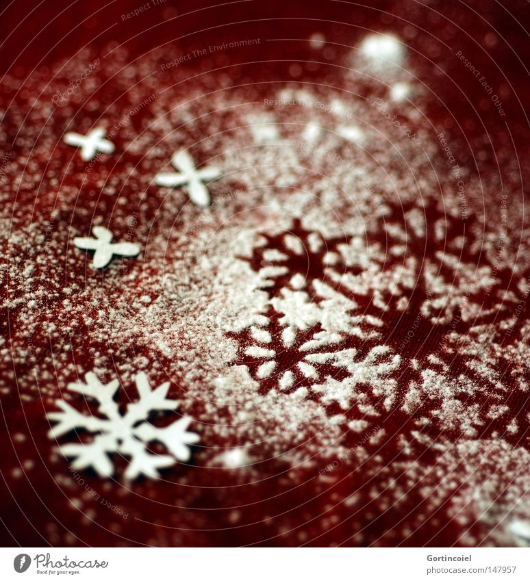 Christmas & Advent Beautiful Winter Snow Feasts & Celebrations Decoration Seasons Copy Space Embellish Christmas decoration Snowflake December Flake Pensive