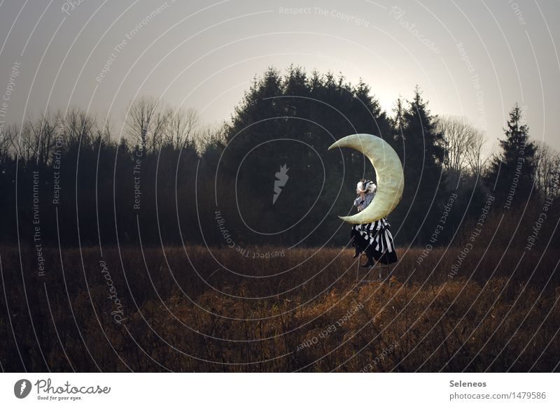 moonstruck Human being Feminine Woman Adults 1 Environment Nature Landscape Sky Clouds Moon Autumn Tree Meadow Field Dream Longing Fantasy literature