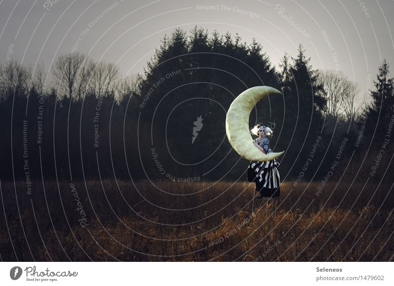 moon Far-off places Freedom Human being Feminine Woman Adults 1 Subculture Rockabilly Environment Nature Landscape Sky Moon Autumn Winter Bushes Meadow Field