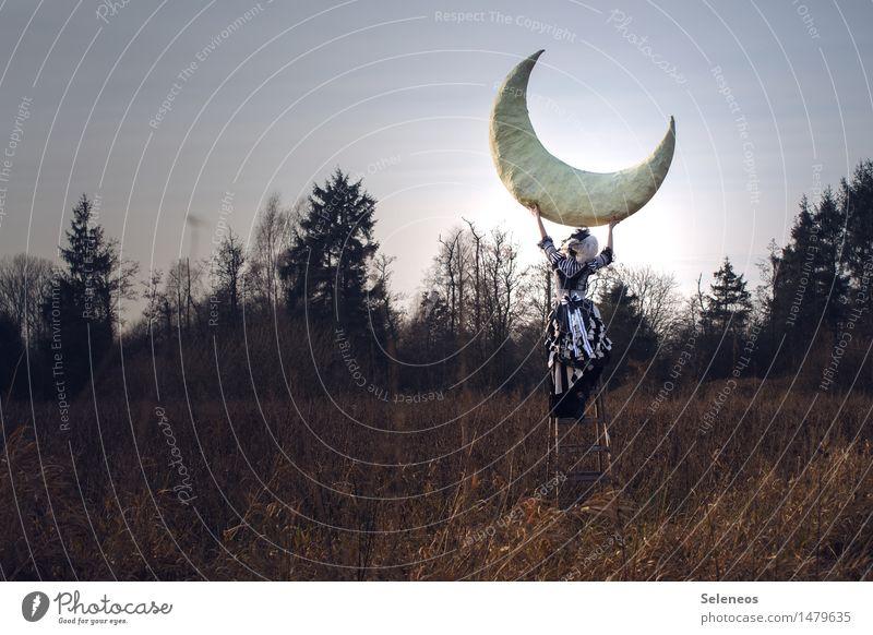 Human being Woman Sky Nature Landscape Adults Environment Autumn Meadow Feminine Horizon Dream Field Bushes Brave Moon