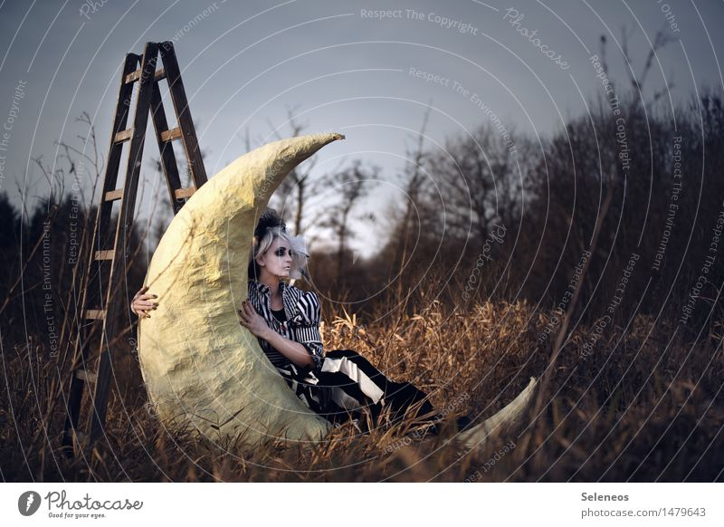 Human being Woman Nature Landscape Adults Environment Autumn Meadow Feminine Dream Field To hold on Moon Ladder Fairy tale Subculture