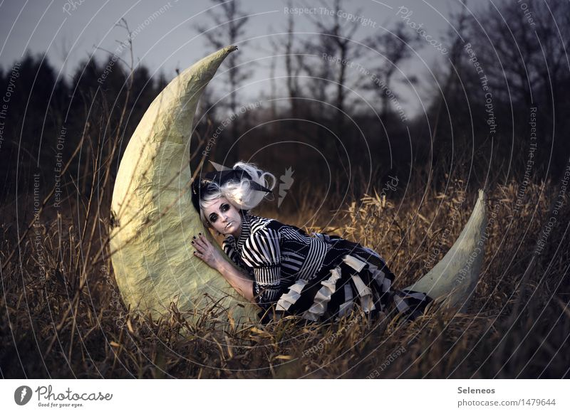 Night night, sleep tight Relaxation Calm Human being Feminine Woman Adults 1 Rockabilly Environment Nature Moon Autumn Tree Meadow Field White-haired Wig Dream
