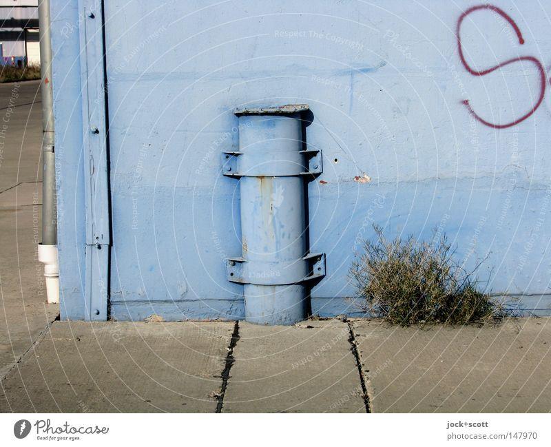blue elise Plant Grass Street Graffiti Blue Colour Transience Bollard Paints and varnish Column Corner Iron-pipe Pipe Unicoloured Molding Clamping piece