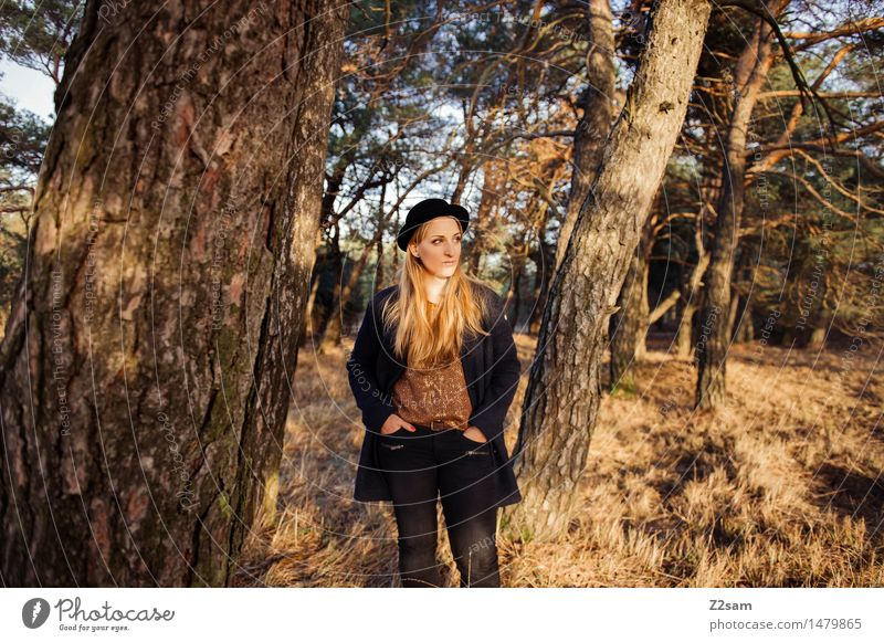 Nature Youth (Young adults) Beautiful Young woman Tree Landscape Forest Adults Autumn Grass Feminine Style Lifestyle Fashion Dream Elegant
