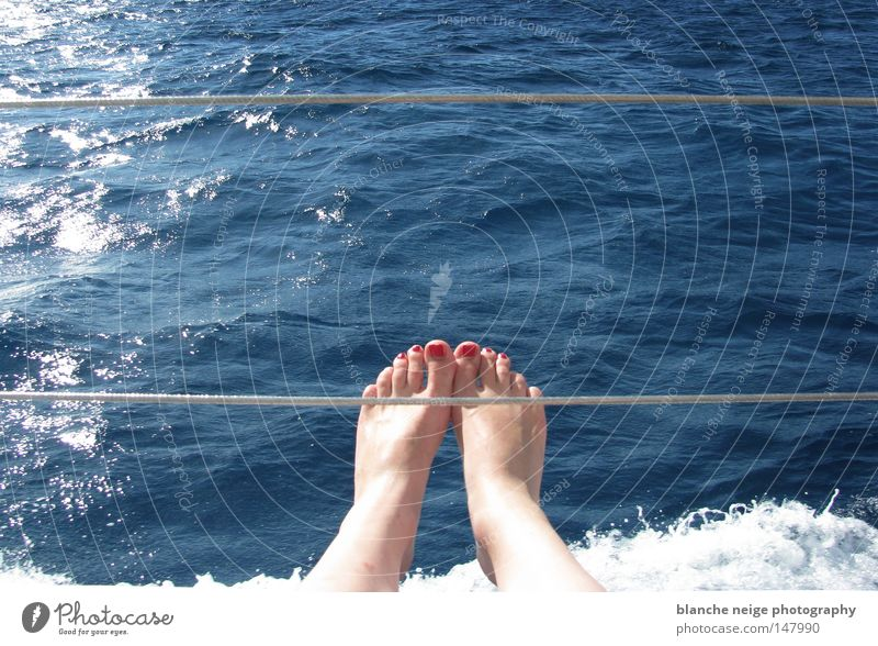 skive Red Toenail Ocean Waves Cairns Watercraft Summer Australia Vacation & Travel Great Barrier Reef Feet Blue sun reflection Swimming & Bathing Relax. Relax.