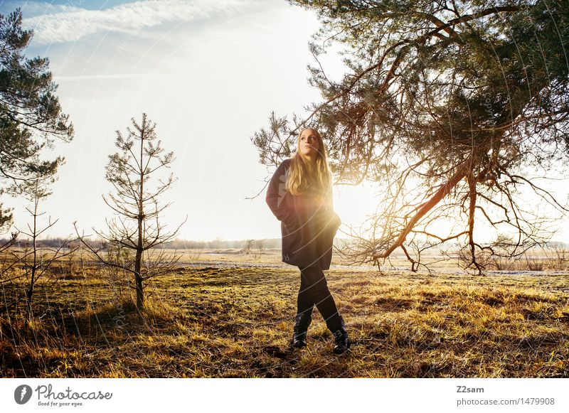 Nature Youth (Young adults) Beautiful Young woman Tree Landscape 18 - 30 years Adults Warmth Autumn Meadow Style Lifestyle Fashion Elegant Idyll