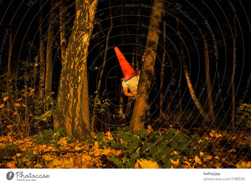 rumpelstiltskin Man Human being Roof Bowel movement Urinate Fill Rental toilet Construction site Small Large Humor Art Forest Tree Tree trunk Ecological Night
