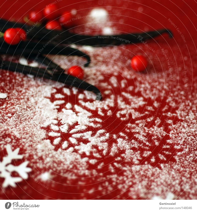 Beautiful Christmas & Advent White Red Feasts & Celebrations Decoration Herbs and spices Symbols and metaphors Fruit Moody Berries Anticipation