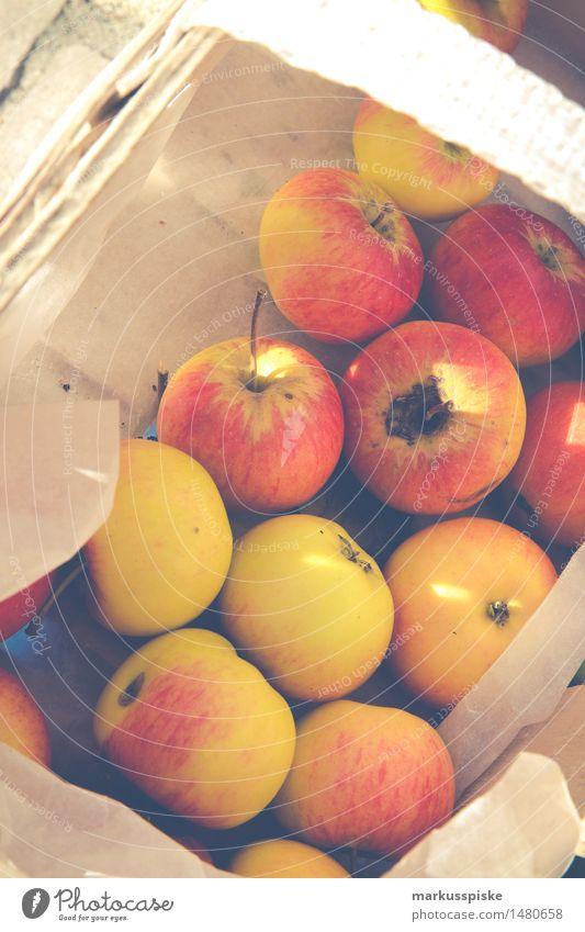 fresh organic harvest apples Food Fruit Apple Nutrition Eating Organic produce Vegetarian diet Diet Fasting Slow food Healthy Healthy Eating Well-being