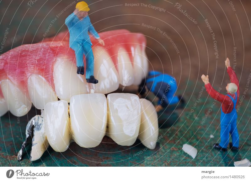 Miniwelten - Tooth restoration III Healthy Health care Medical treatment Model-making Craftsperson Doctor Workplace Construction site Services Human being