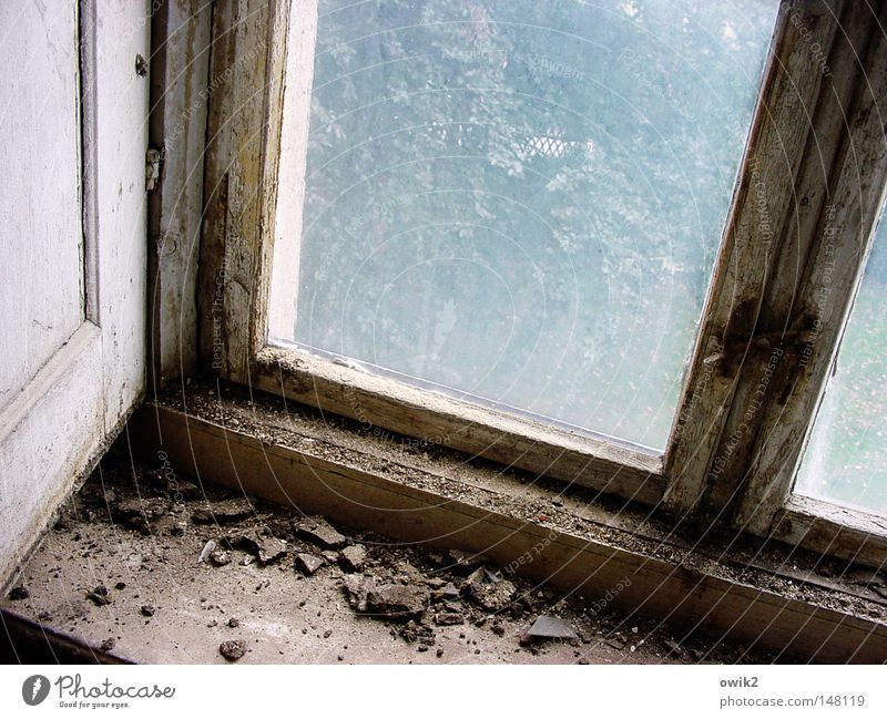 Long time not ventilated Redecorate Interior design Wall (barrier) Wall (building) Window Glass Old Historic Broken Loneliness Decline Past Transience