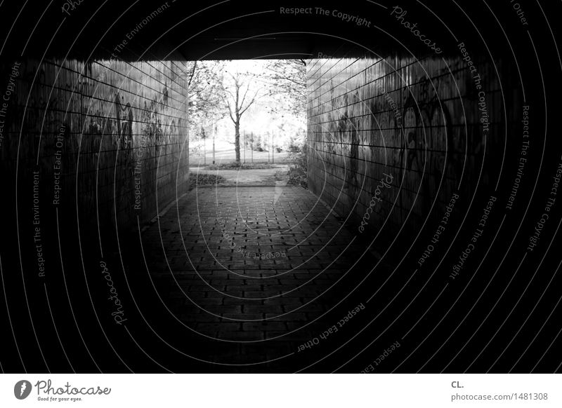 a way out Nature Tree Tunnel Manmade structures Wall (barrier) Wall (building) Lanes & trails Dirty Dark Authentic Creepy Curiosity Hope Belief Sadness Death
