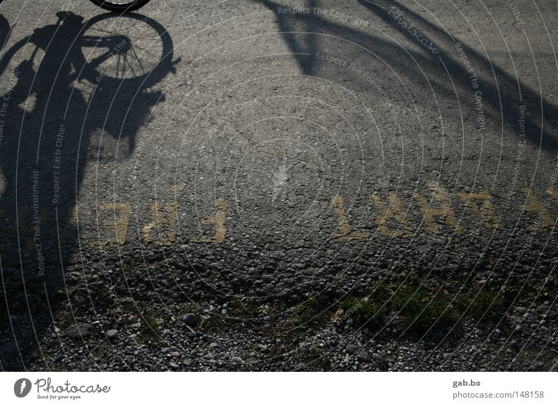 free.trip Street Dynamics Speed Bicycle Tire Shadow Perspective Light Reflection Asphalt Arrangement Pebble Green Leaf Free Freedom Leisure and hobbies Movement