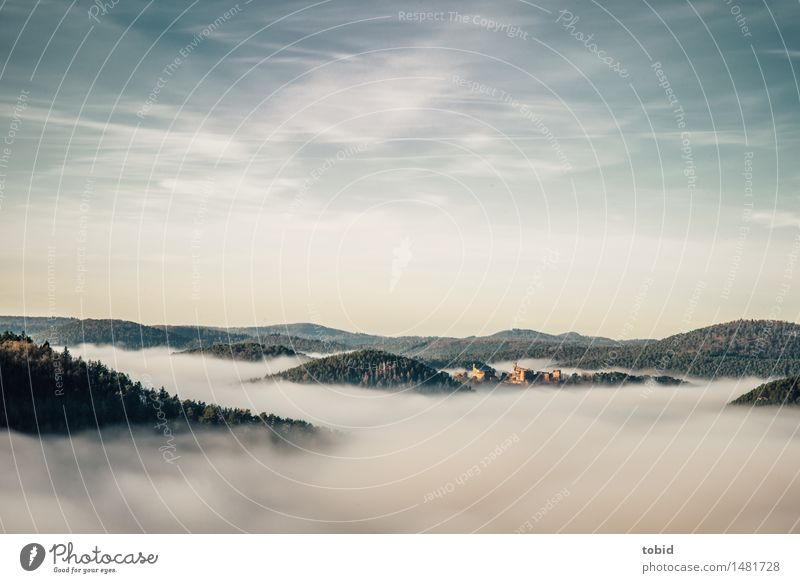 above the clouds Nature Landscape Sky Clouds Horizon Beautiful weather Fog Forest Hill Castle Ruin Esthetic Far-off places Infinity Tall Freedom Idyll Peak