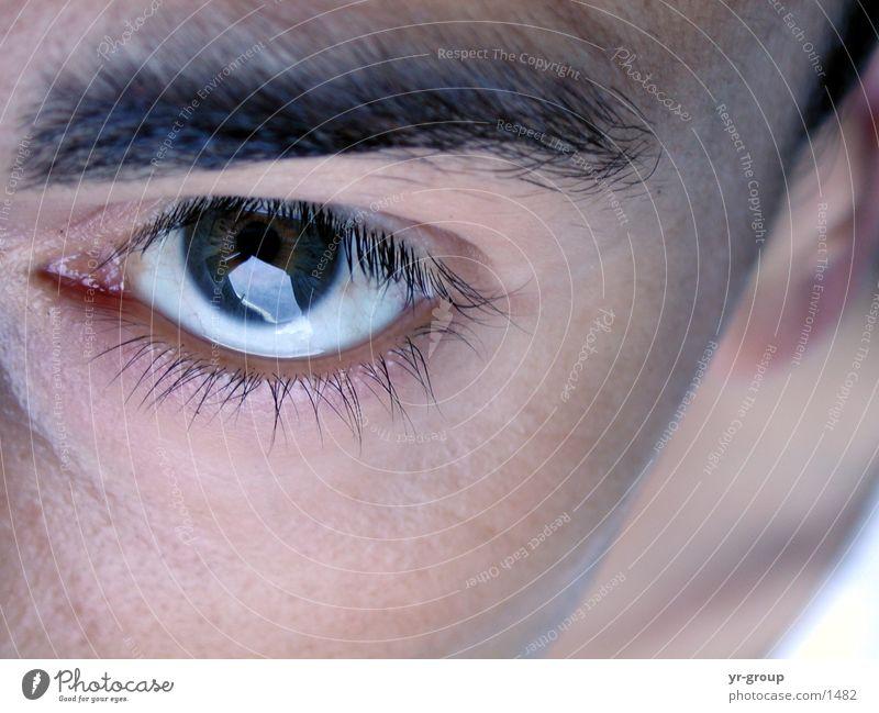 Human being Man Face Eyes Head Skin Eyelash Eyebrow Pupil