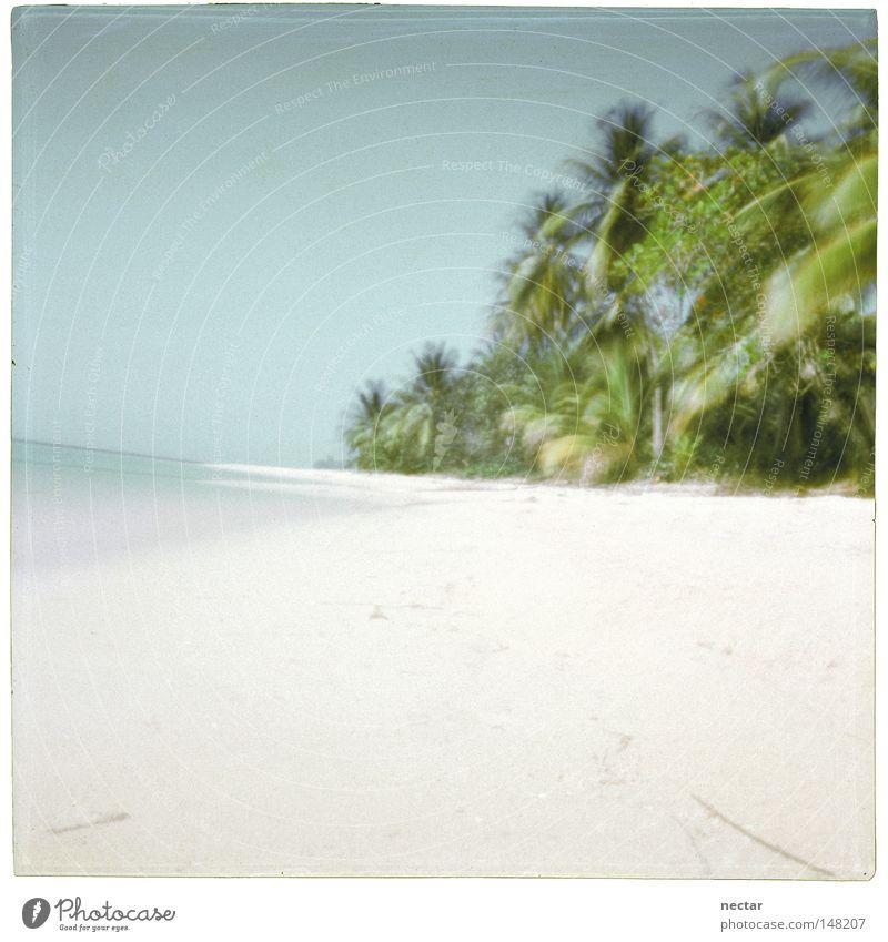 Blue Water Green Vacation & Travel Ocean Summer Beach Calm Landscape Gray Air Bright Wind Contentment Power Pink