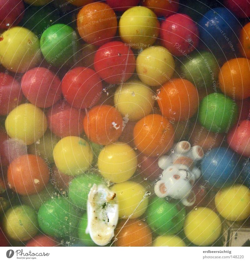 Old Joy Infancy Sweet Hope Round Plastic Fantastic Candy Delicious Window pane Nostalgia Memory Poison Bear Sense of taste