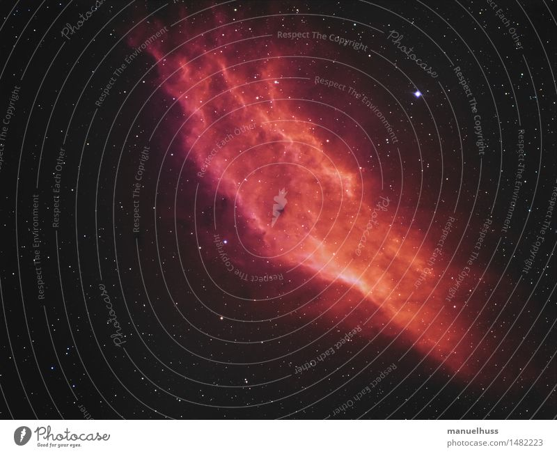 California Nebula Night sky Stars Red Astronomy Astrophotography Science & Research Fog Universe Infinity Telescope Starry sky Colour photo Exterior shot