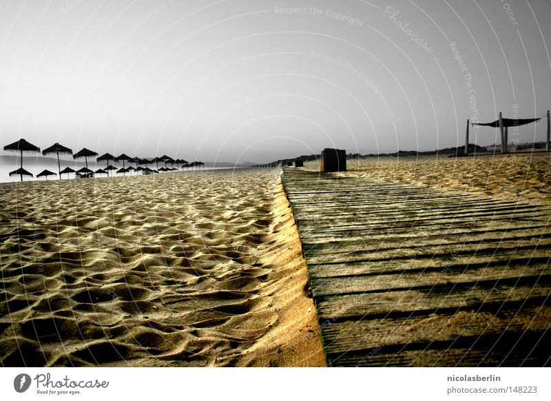 Sky Blue Beach Vacation & Travel Ocean Loneliness Black Yellow Relaxation Gray Wood Sand Stone Coast Feet Earth
