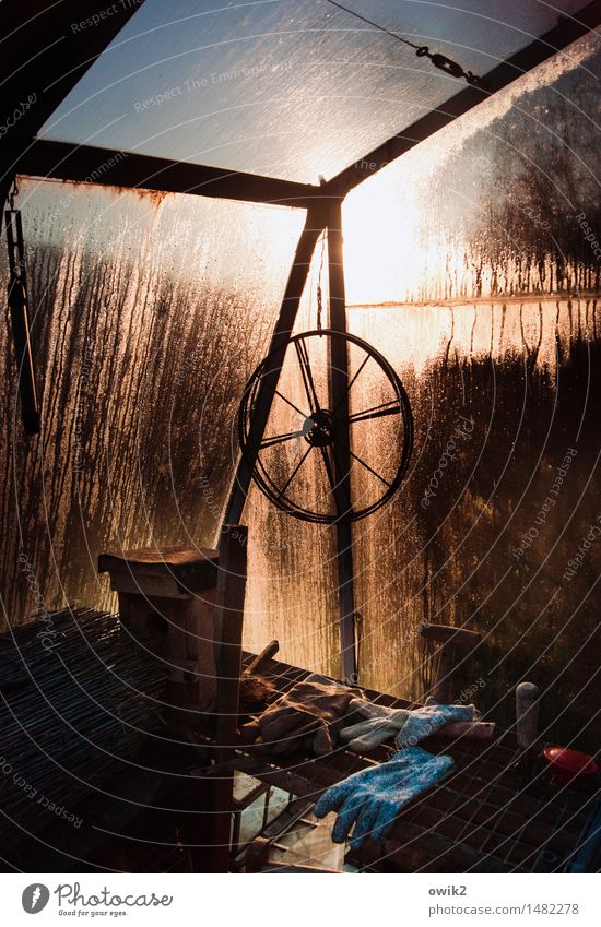 In the greenhouse Greenhouse Wheel Gloves Things Corner Glass wall Condensation Metal Illuminate Old Wet Moody Calm Idyll Peaceful Still Life Drops of water