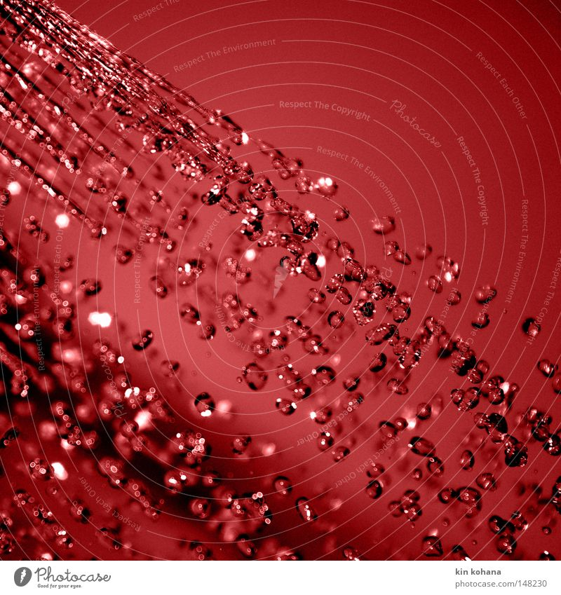 Colour Water Red Dark Lighting Drops of water Wet Transience Drop Radiation Diagonal Damp Inject Intensive Macro (Extreme close-up) Close-up