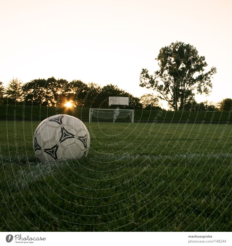 Sun Line Soccer Field Places Lawn Net Leisure and hobbies Gate Playing field Sporting grounds Soccer player World Cup Kick South Africa Door