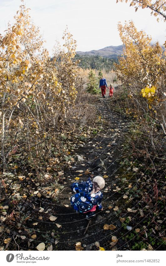 Family hike - Alaska 12 Life Well-being Calm Leisure and hobbies Vacation & Travel Trip Far-off places Hiking Parenting Feminine Child Toddler 3 Human being