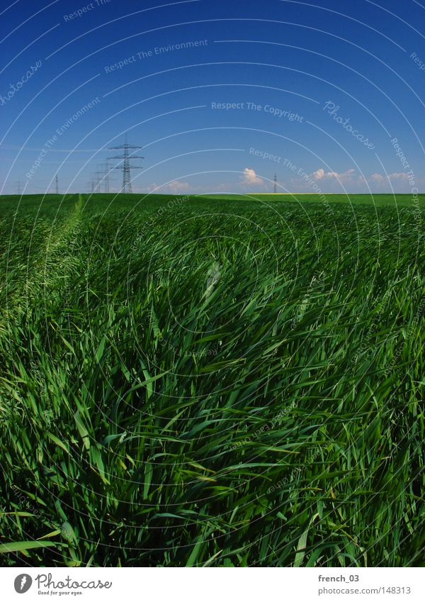 energy everywhere Nature Sky Green Blue Clouds Far-off places Spring Freedom Landscape Power Field Environment Large Energy