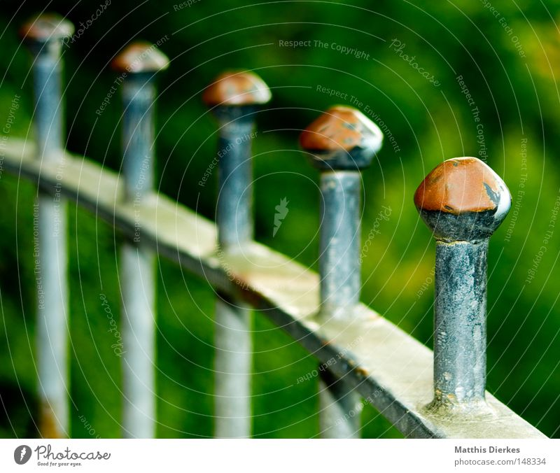 Green Colour Autumn Metal Background picture Derelict Fence Border Rust Handrail Depth of field Iron Column Captured Barrier Bans
