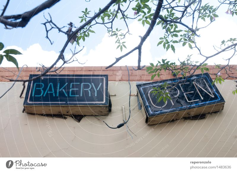 Facade Open Signs and labeling Nutrition To enjoy Cooking & Baking Closed Uniqueness Tilt Advertising Store premises Baked goods Clue Dough Problem solving