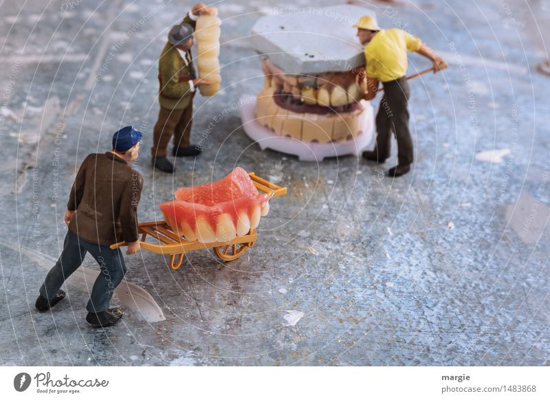 Miniwelten - Dental restoration transport Nutrition Model-making Work and employment Profession Craftsperson Doctor Construction site Services Health care