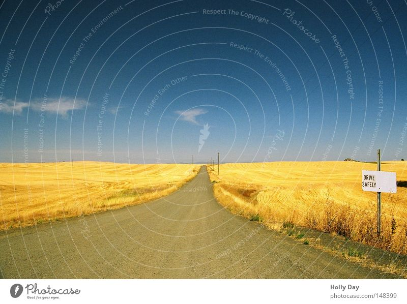 Drive safe! Field Pol-filter Blue Sky Beautiful weather Harvest Yellow Gold Golden yellow Pattern Horizon Summer Wheatfield Far-off places Infinity Island USA